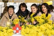 U Zagrebu obilježen 13. Dan mimoza